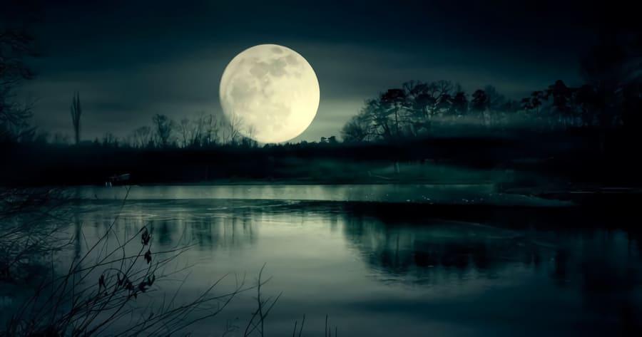 Nattens dikt